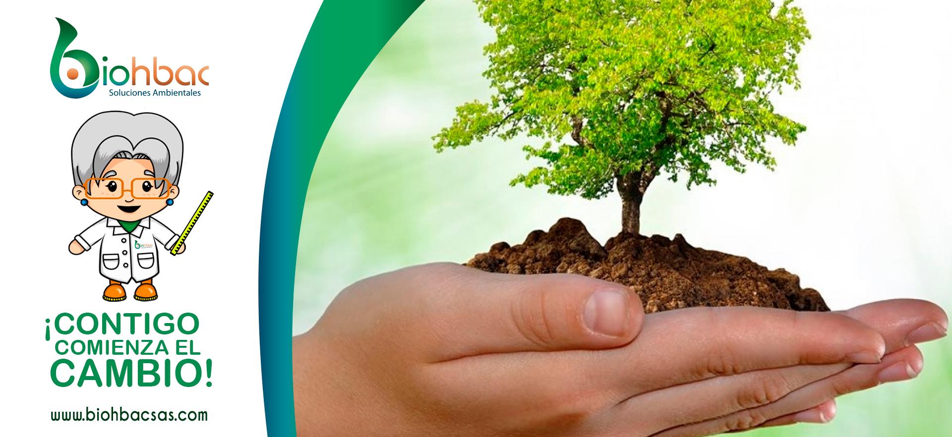10 consejos prácticos para cuidar el medio ambiente y ahorrar dinero